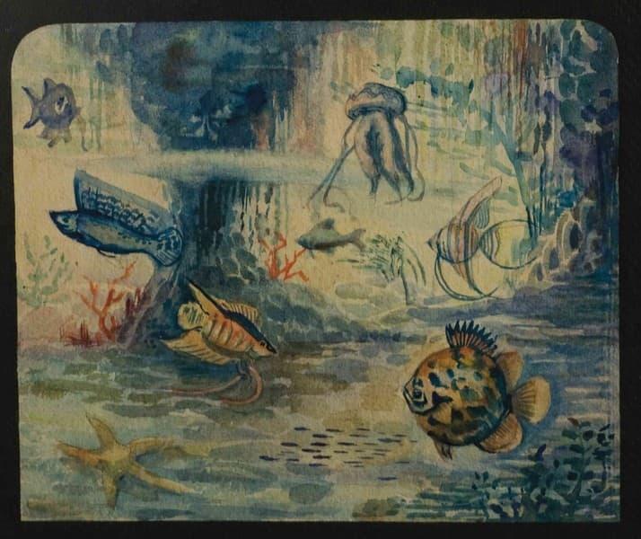 """""""Viaje Submarino"""". Attrazione acquatica"""
