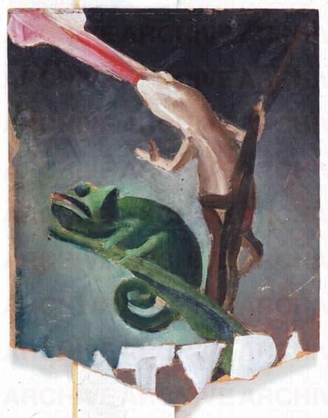 Studio per copertina della rivista mensile illustrata Natura Anno II N°2